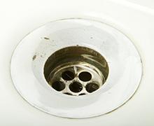 toilet_p03.jpg